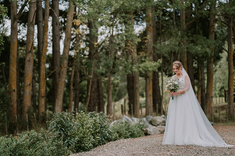 Roseburn Park wedding photography of Shane and Jess in Palmerston North 0148