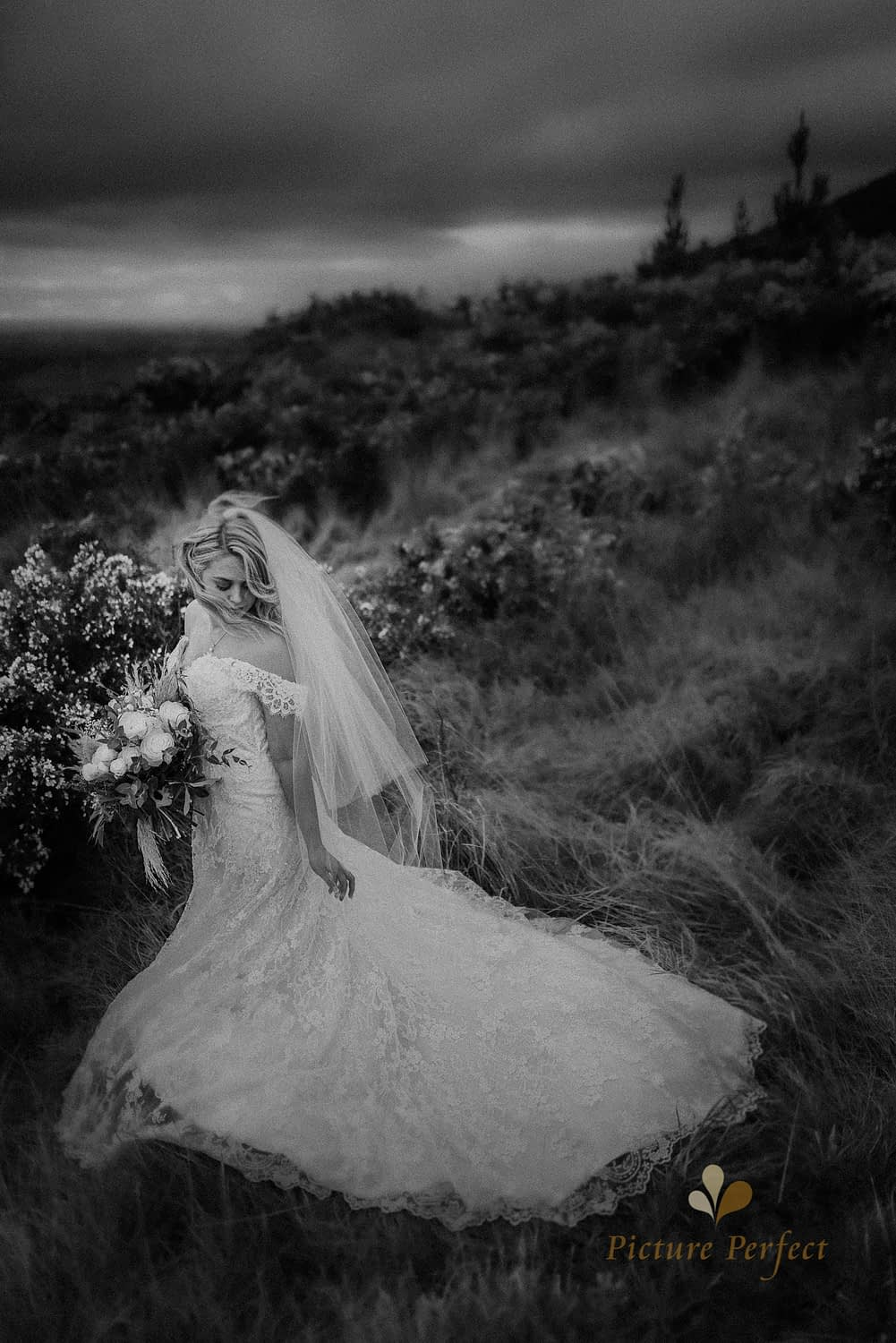 Stunning black and white classic wedding portrait of a bride in a field