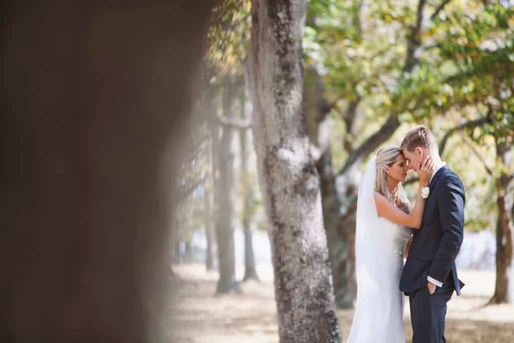 Wairarap bride and groom wedding portrait in a magical forest